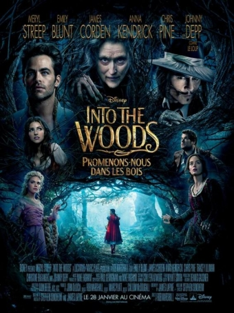 142021317328051927180_into_the_woods_ver12[1]