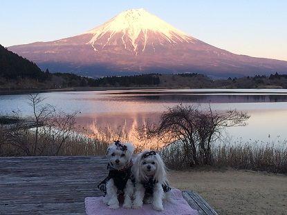 富士山24
