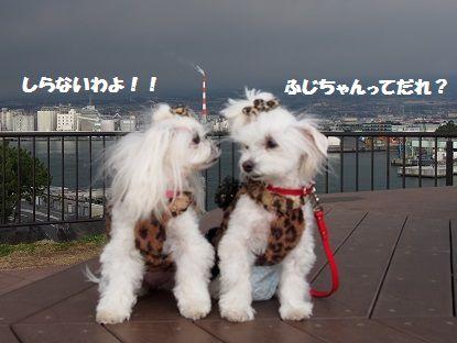富士山513