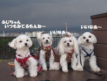 富士山514