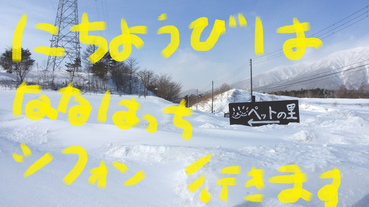 20150111_133021.jpg