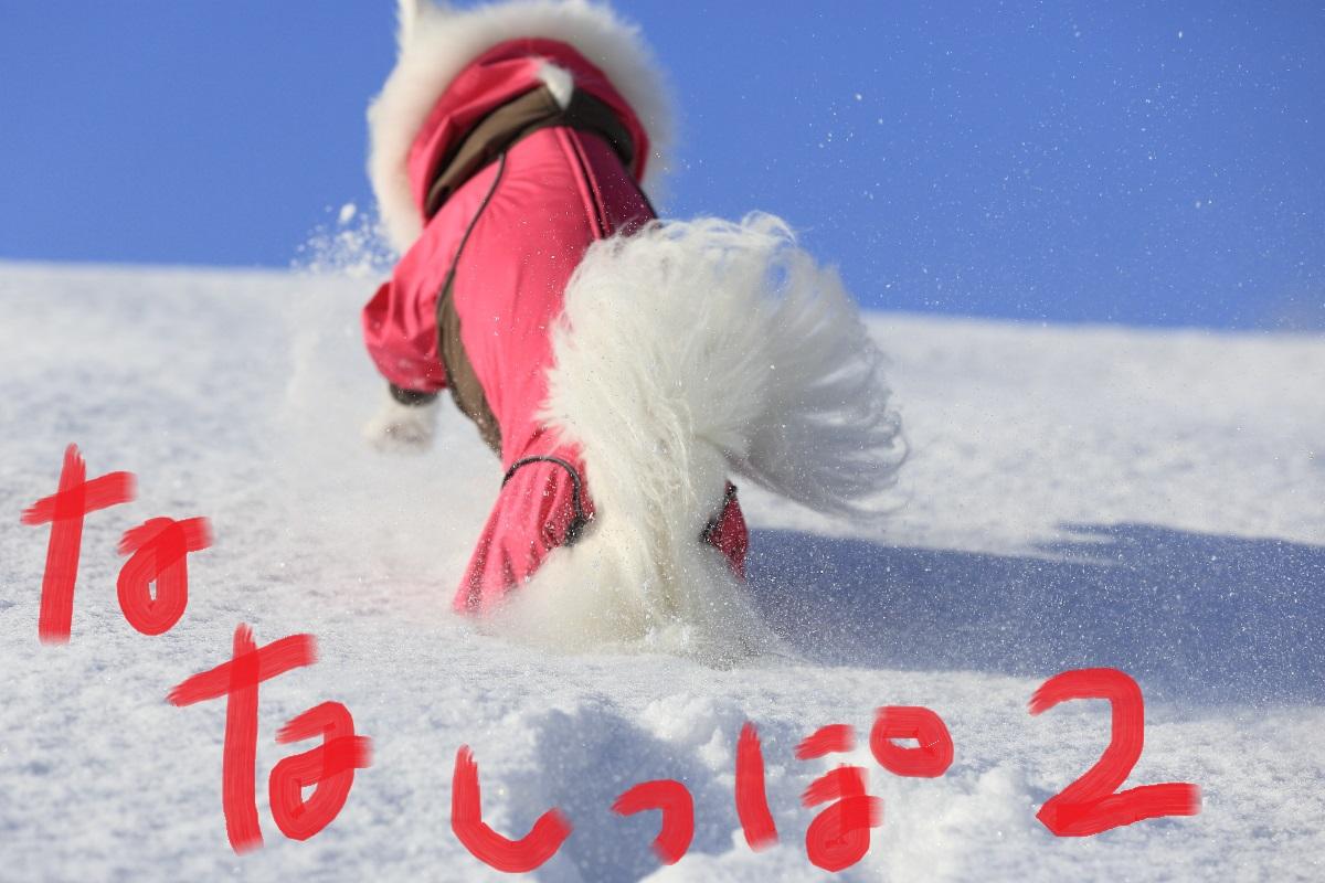 2K5A8896.jpg