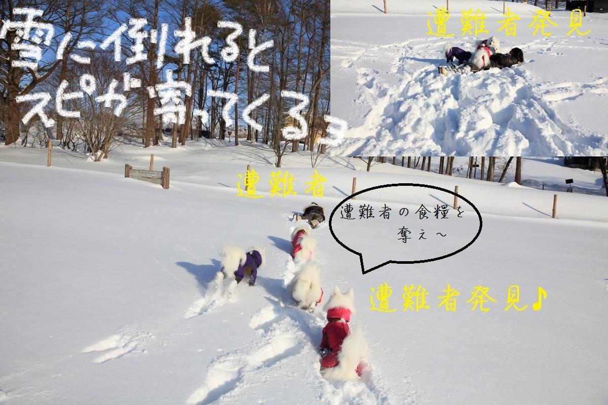 2_20150114214218cfa.jpg