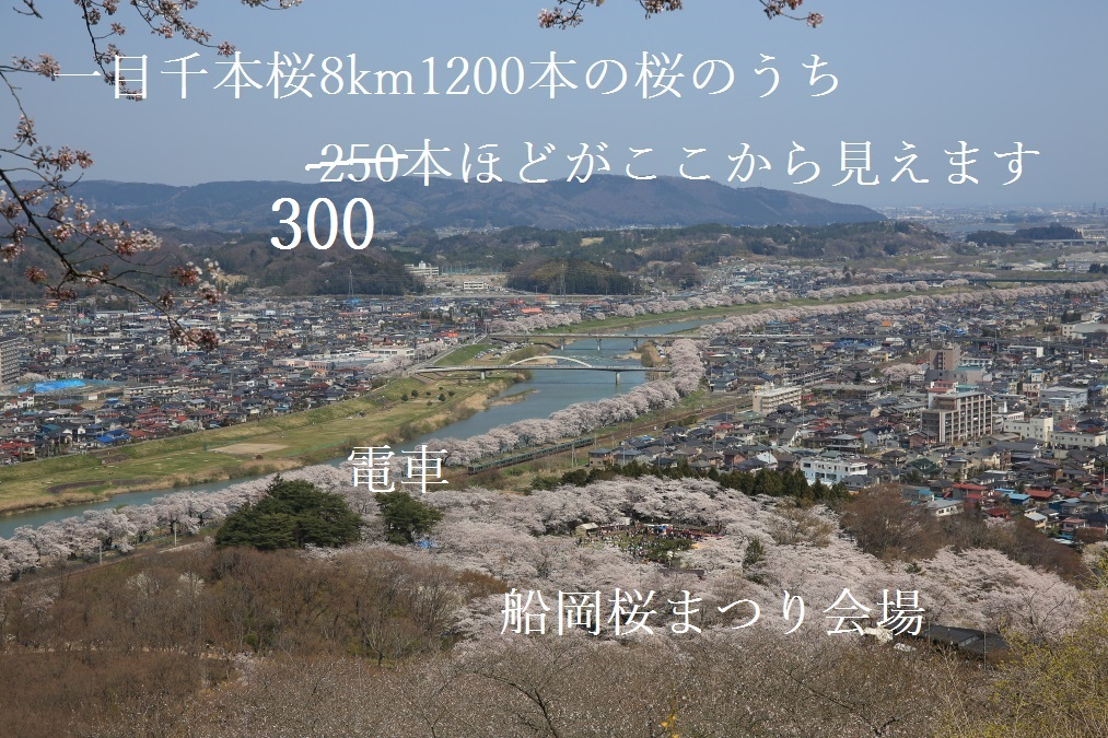 2_201504152023189ce.jpg