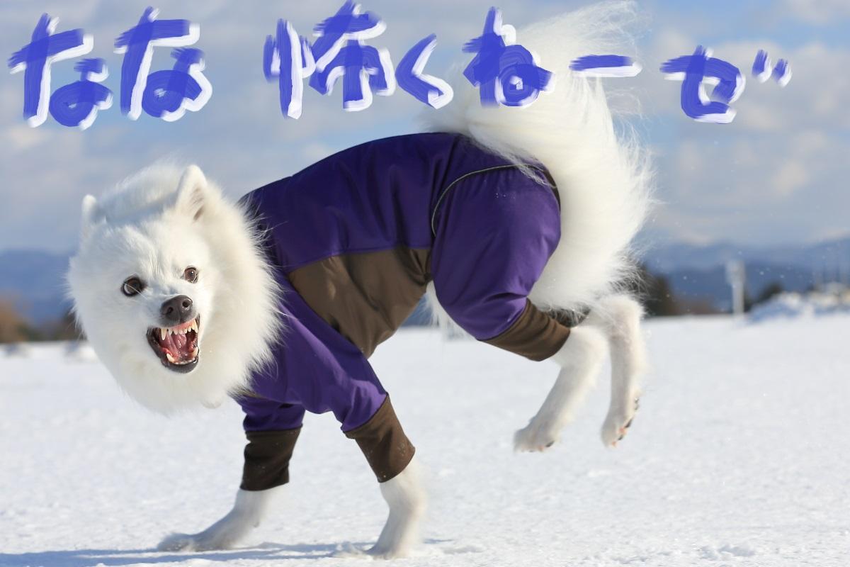 3_201501162253198ff.jpg