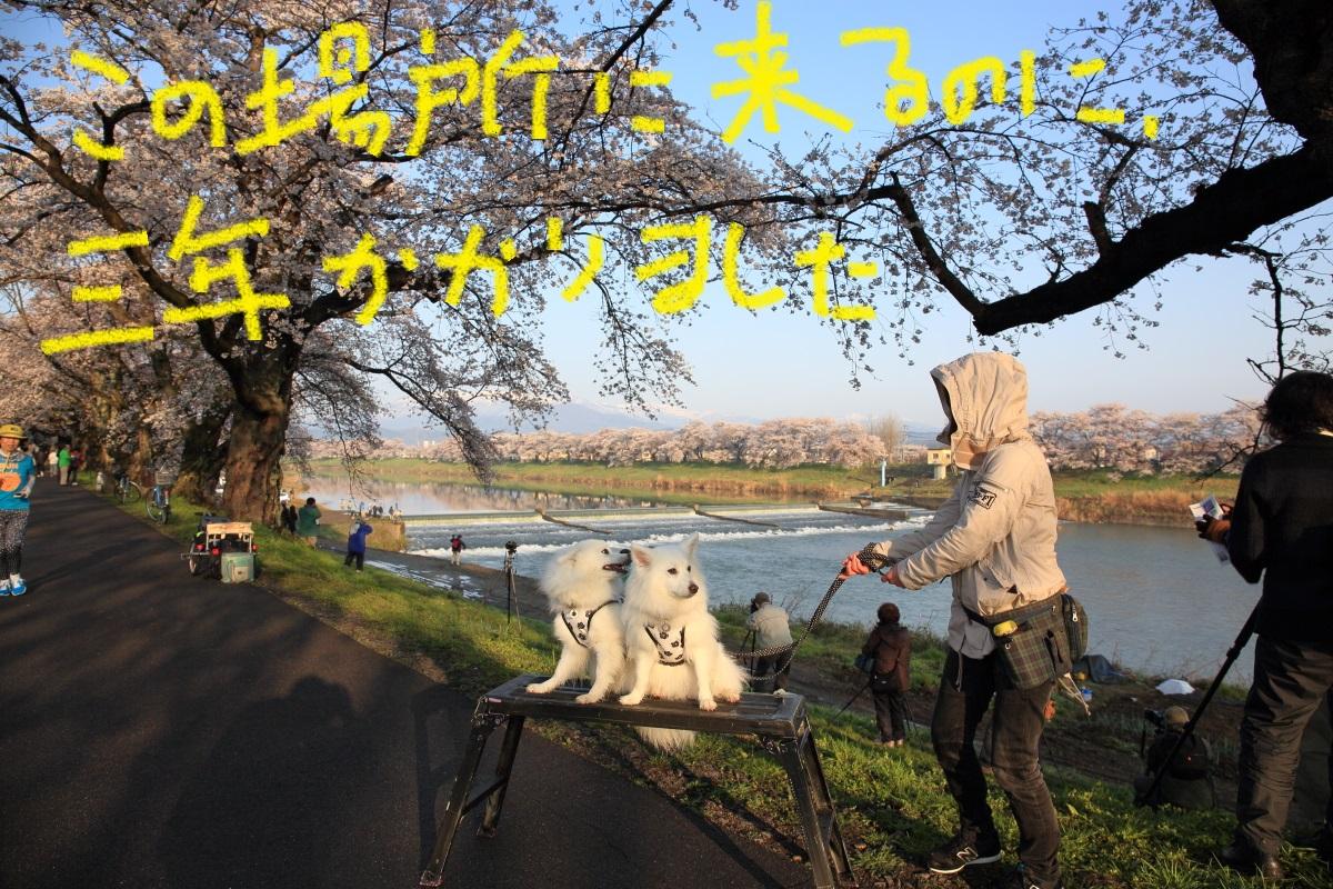 3_20150413070708073.jpg