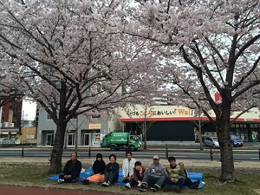 三萩野公園花見3