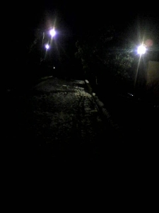 150131_夜道