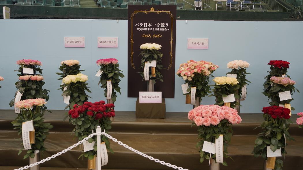 AAA薔薇切り花-58回品評会 -1-第7回国際バラトガーデニングシ