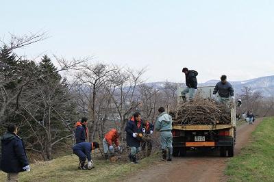 桜並木清掃2015-4-21 039