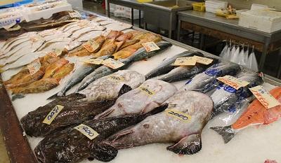柿崎商店 魚 2015-06-06042