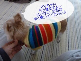 ブログ用P1040570-20141203-140238