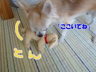 ブログ用P1040628-20141225-124145