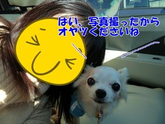ブログ用20150107-150304