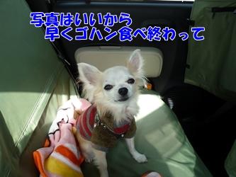 ブログ用037-20150124-124440