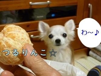 ブログ用077-20150130-205144 (29)
