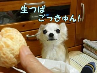 ブログ用077-20150130-205144 (31)