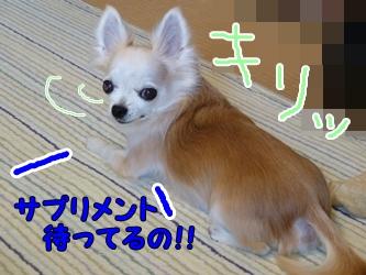 ブログ用077-20150130-205144 (49)