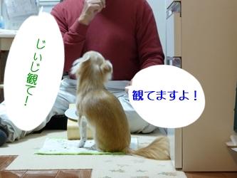 ブログ用077-20150130-205144 (28)