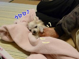 ブログ用077-20150130-205144 (9)