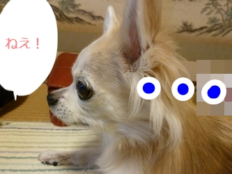 ブログ用077-20150130-205144 (18)