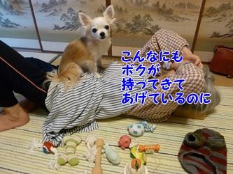 ブログ用077-20150130-205144 (46)