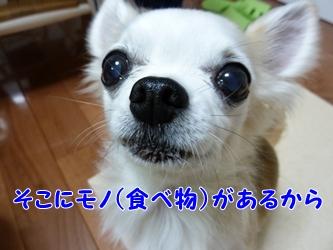 ブログ用003-2015 02 26-193441