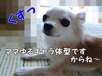 ブログ用001-2015 04 27-130302