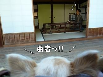 ブログ用015-2015 05 05-155039