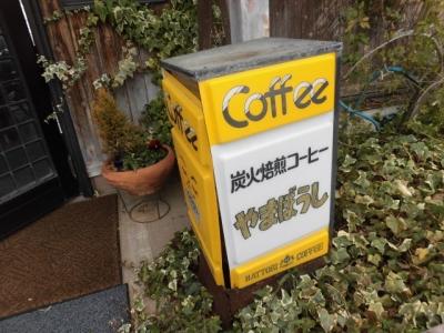 やまぼうし (6)