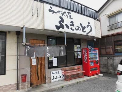 ふきのとう (10)