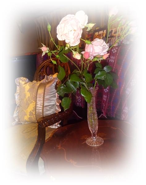 DSC01992お庭のバラ