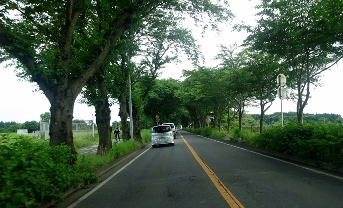 DSC02161瀬谷海軍道路