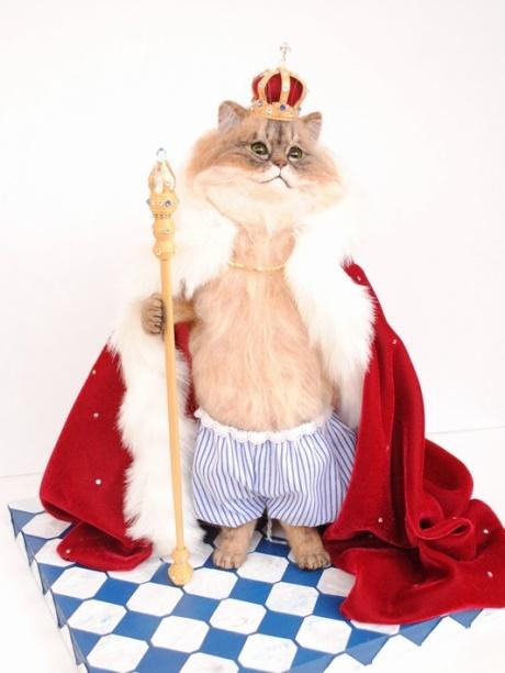 裸の猫王様2 010