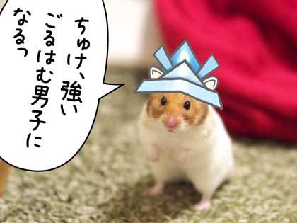 こいのぼり9