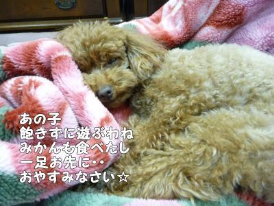 8_convert_20150214150238.jpg