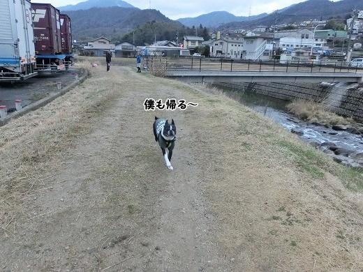 CIMG1284.jpg