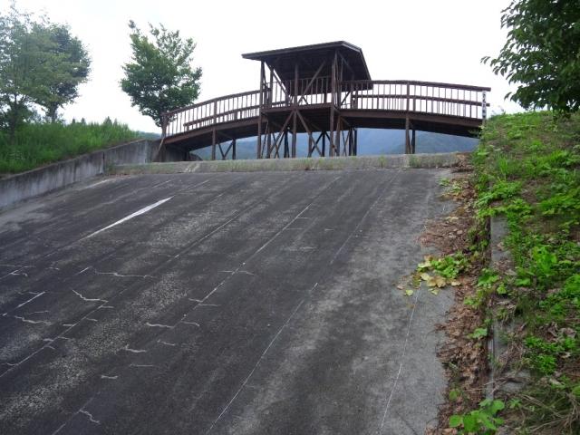 さくら橋 (6)