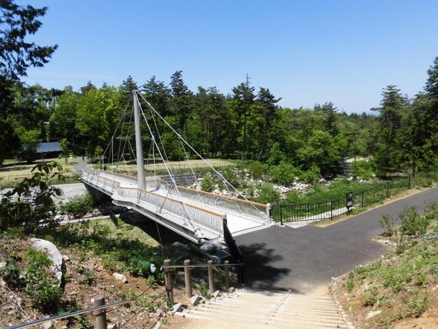 烏川吊り橋 (2)
