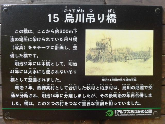 烏川吊り橋 (11)