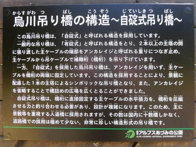 烏川吊り橋 (12)