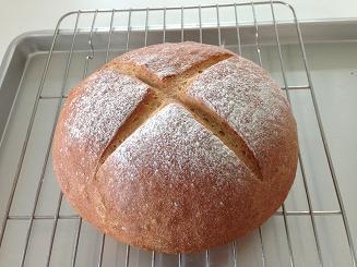 トーフミールパン ブログ用