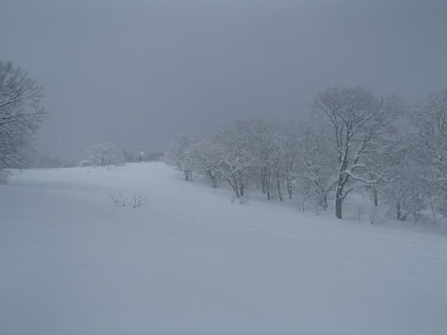 150220黒姫山BC_4