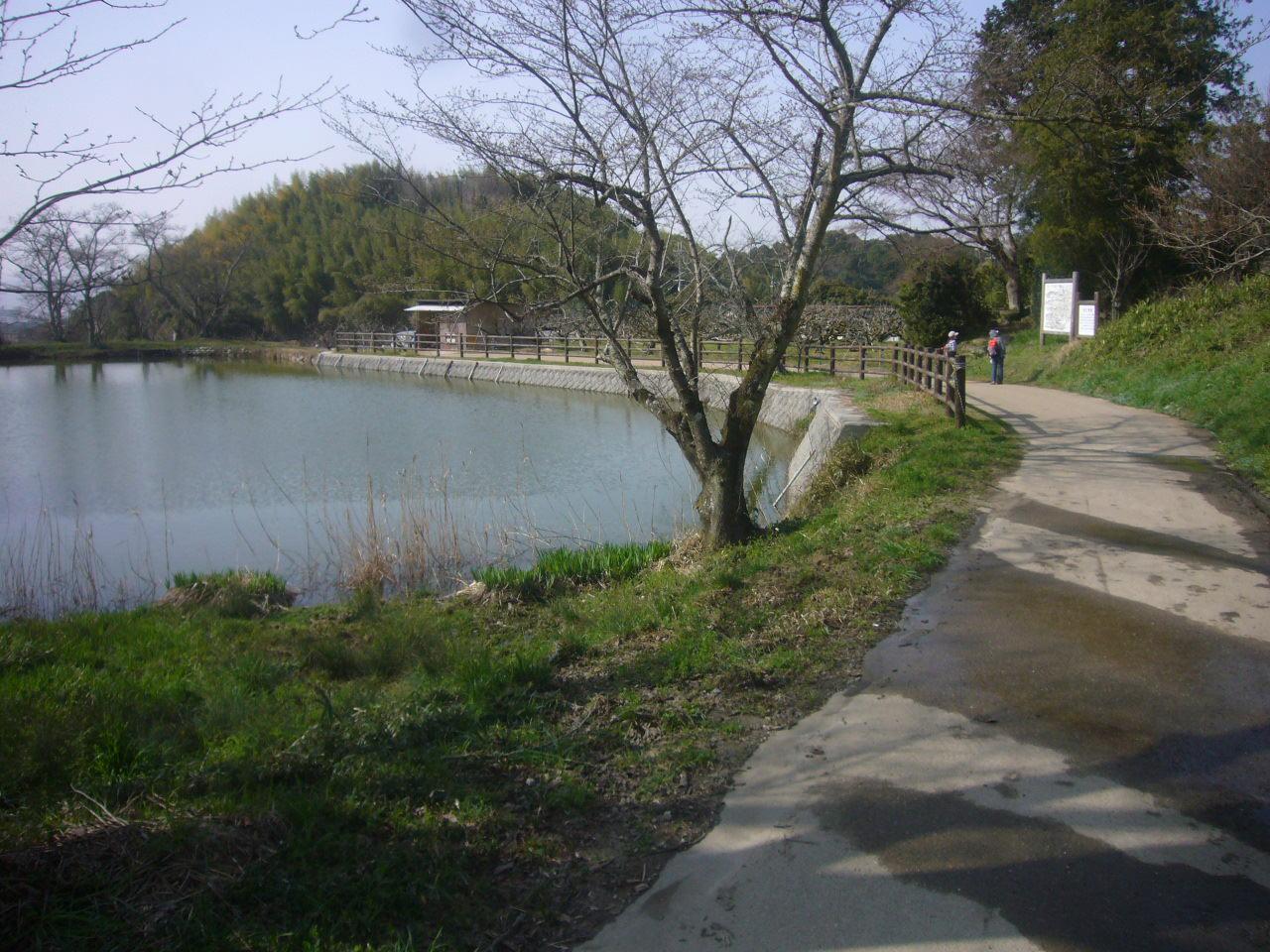 奈良山辺の道 H27.3.21撮影