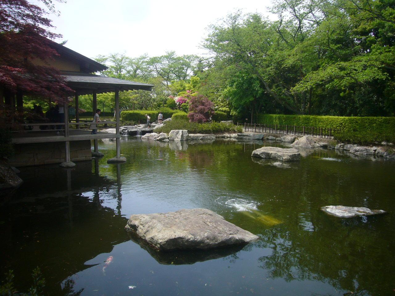 西山公園庭園H27.5.6