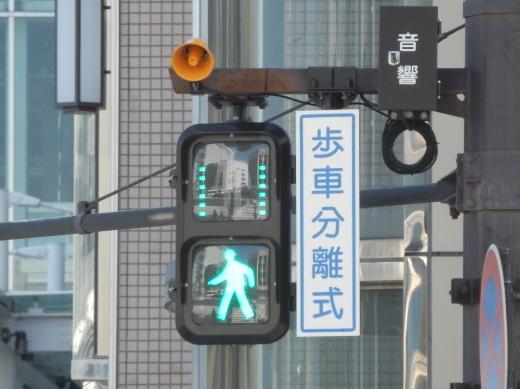 toyamacitytoyamaekimaehigashisignal1504-8.jpg