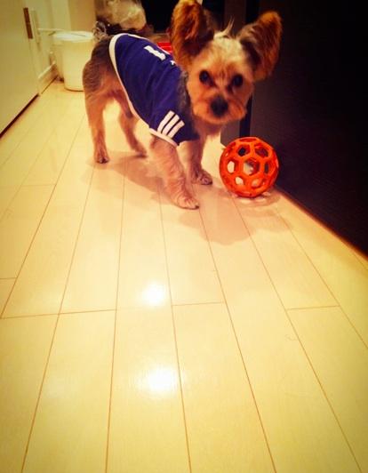ROY soccer