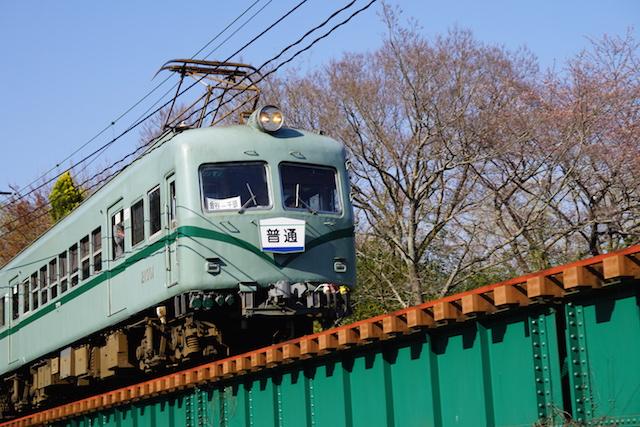 0328桜3
