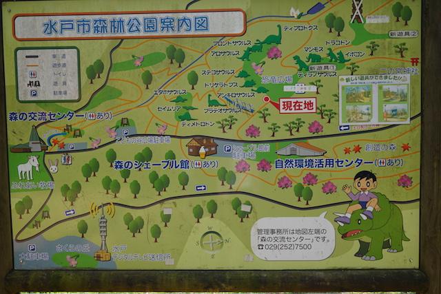 0429森林公園1