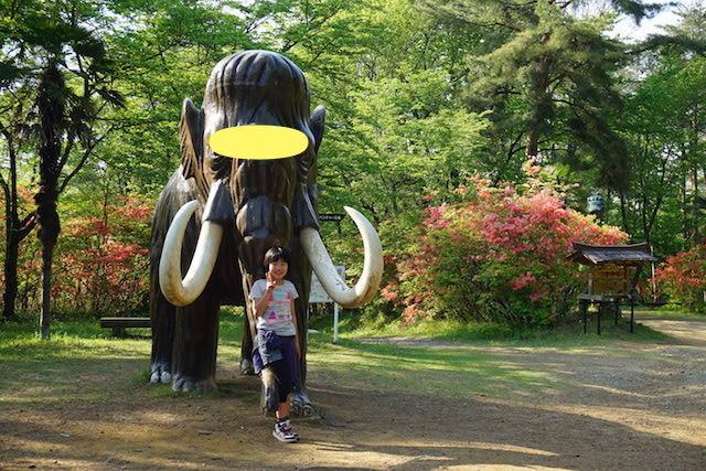 0429森林公園5